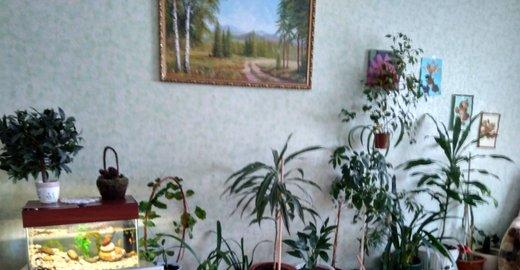 пансионат для пожилых в красном селе