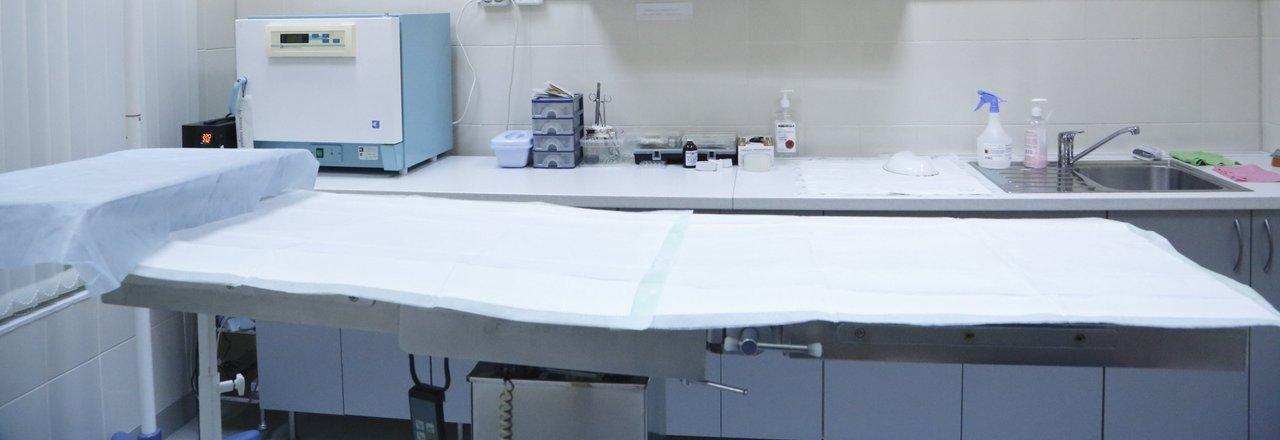 фотография Ветеринарной клиники Арс медика на Берёзовой аллее