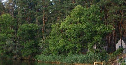 фотография Базы отдыха Жемчужина в Песчанке
