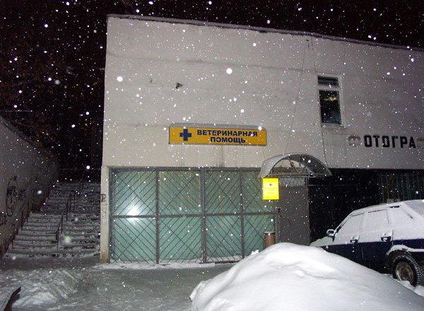 фотография Ветеринарной клиники Альбетта на улице Клары Цеткин