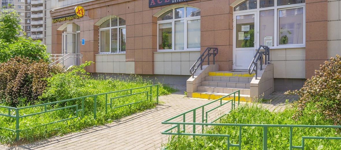 Фотогалерея - Зооцентр Эйс Вентура на улице Академика Виноградова, 1к1