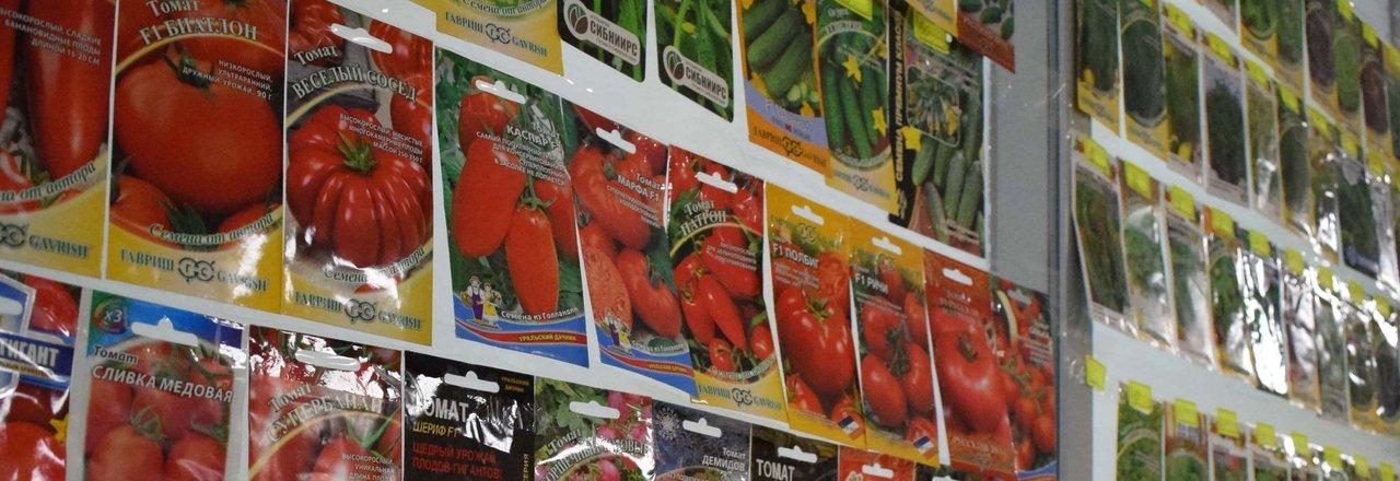 прайс лист интернет магазина сортовые семена на енисейской