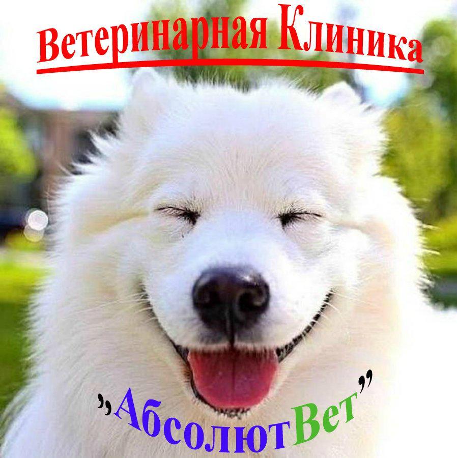 """фотография Ветеринарного центра """"АбсолютВет"""" на Дербеневской набережной"""