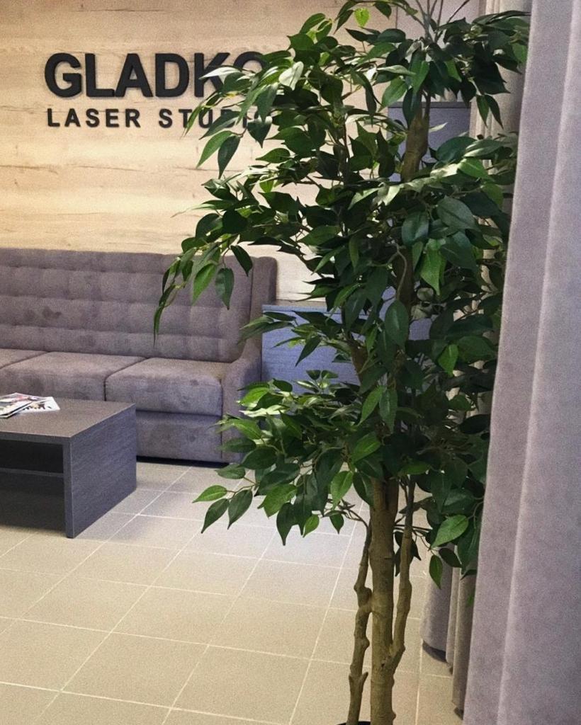 фотография Студии лазерной эпиляции и аппаратной косметологии Gladko на улице Юлиуса Фучика