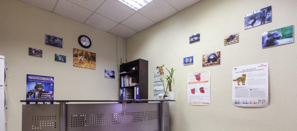 """Фотогалерея - Ветеринарная клиника """"Гос-Вет"""" на Братиславской улице"""