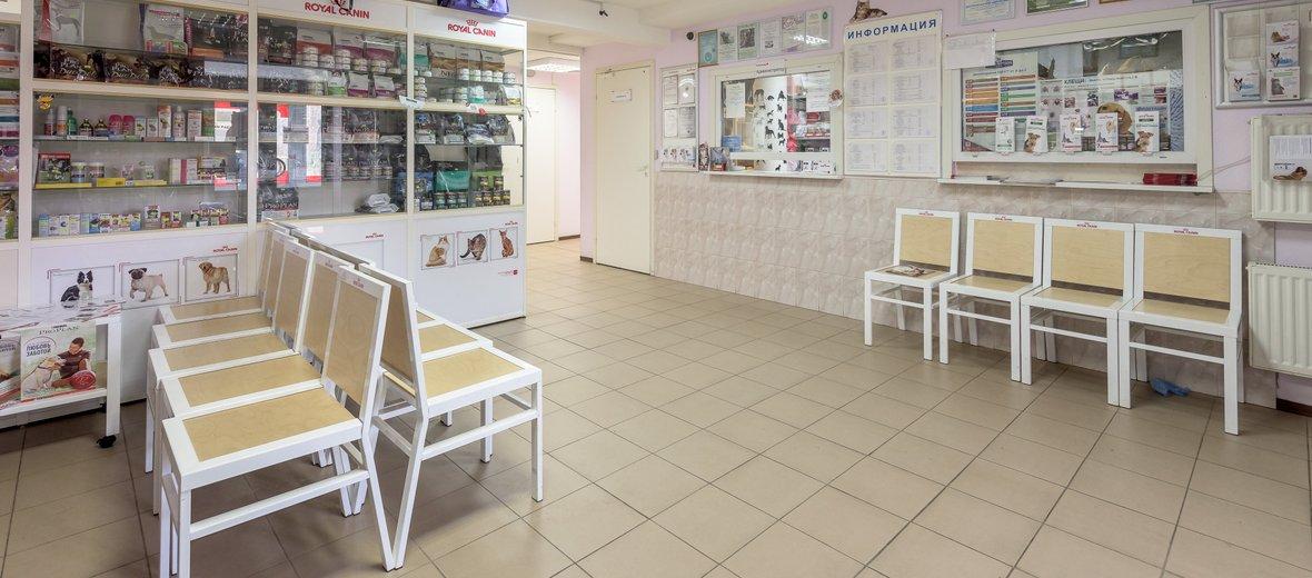 Фотогалерея - Ветус, сеть ветеринарных клиник