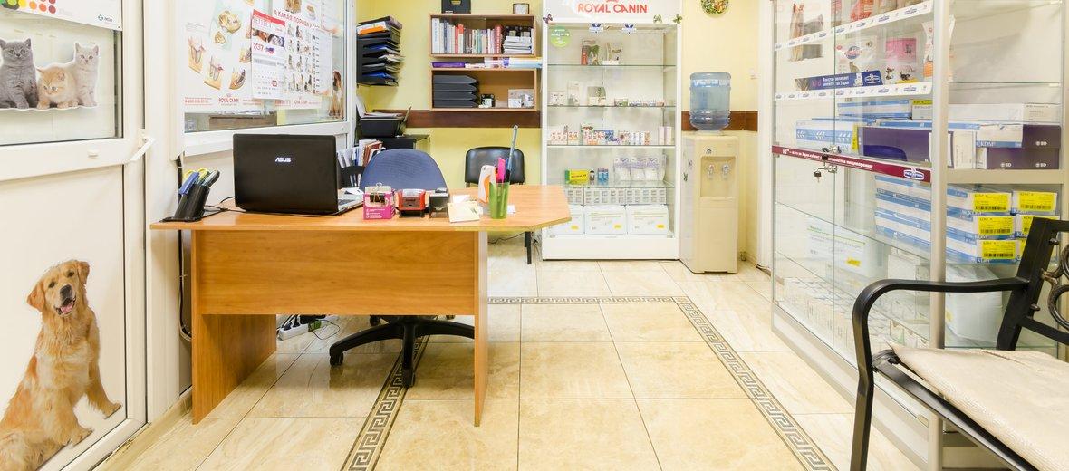 Фотогалерея - Ветеринарная клиника Vet-Home-Help на Малой Почтовой улице