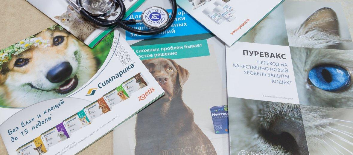Фотогалерея - Ветеринарный кабинет Альфа на улице Восстания