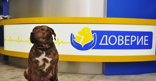 Харьков анализ крови собак гиппократ комиссия медицинская на черной речке в санкт-петербурге