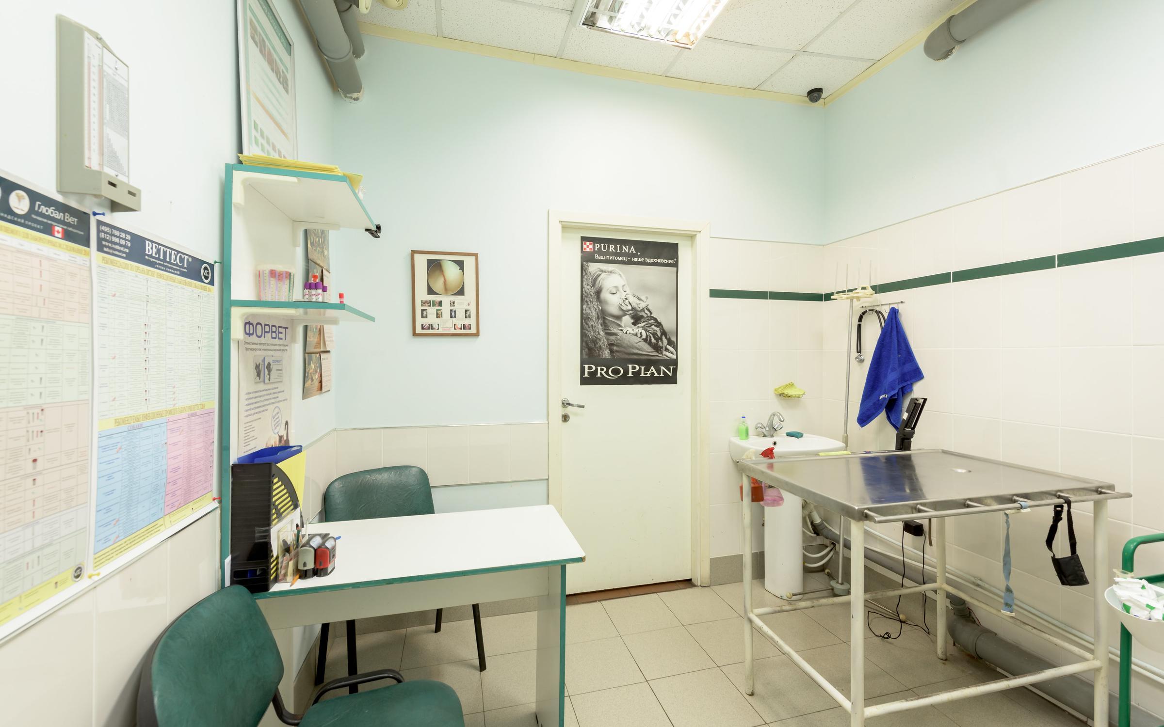 Ветеринарные клиники тольятти 50 лет