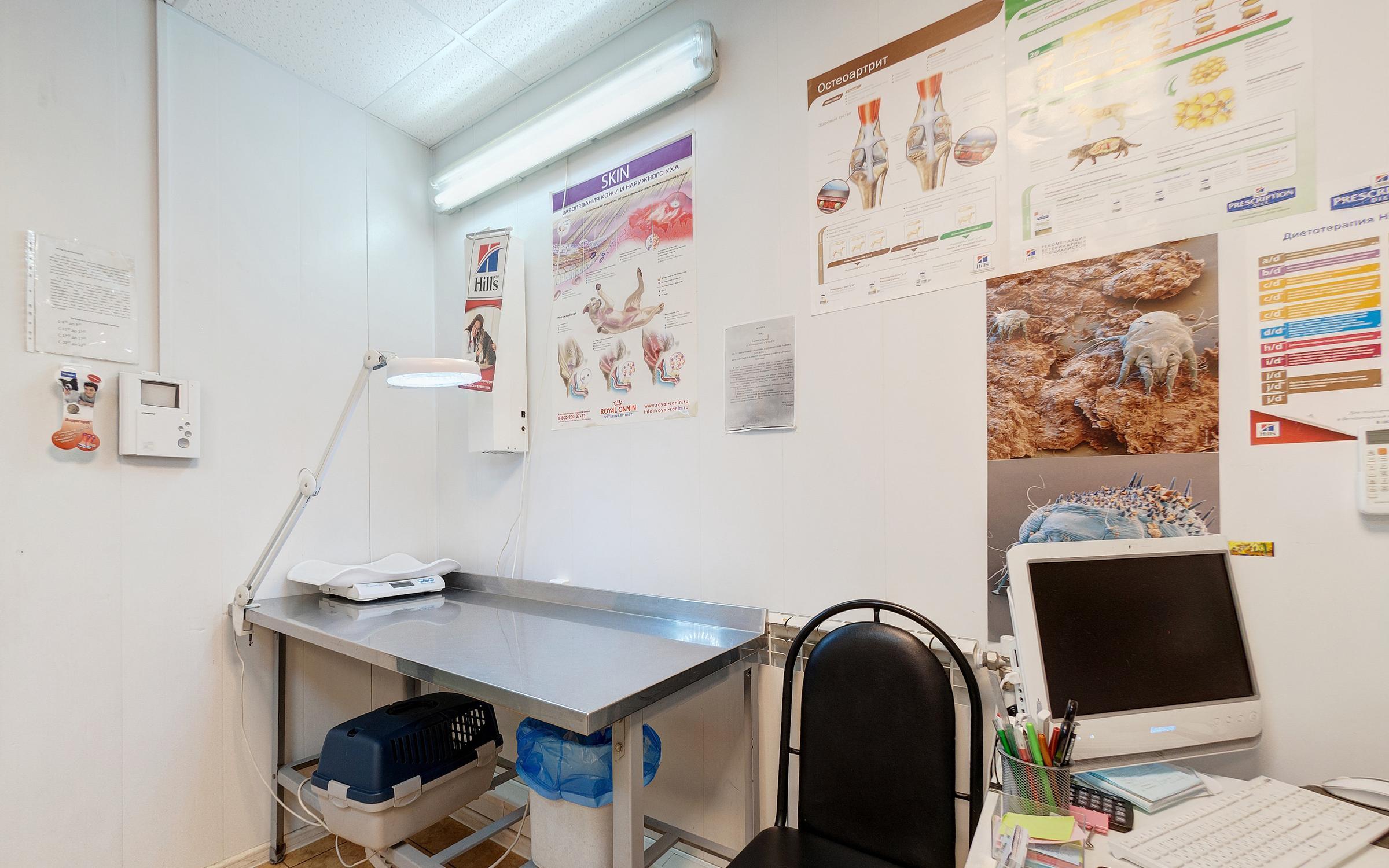 Ветеринарная клиника Анита на Кохомском шоссе  отзывы