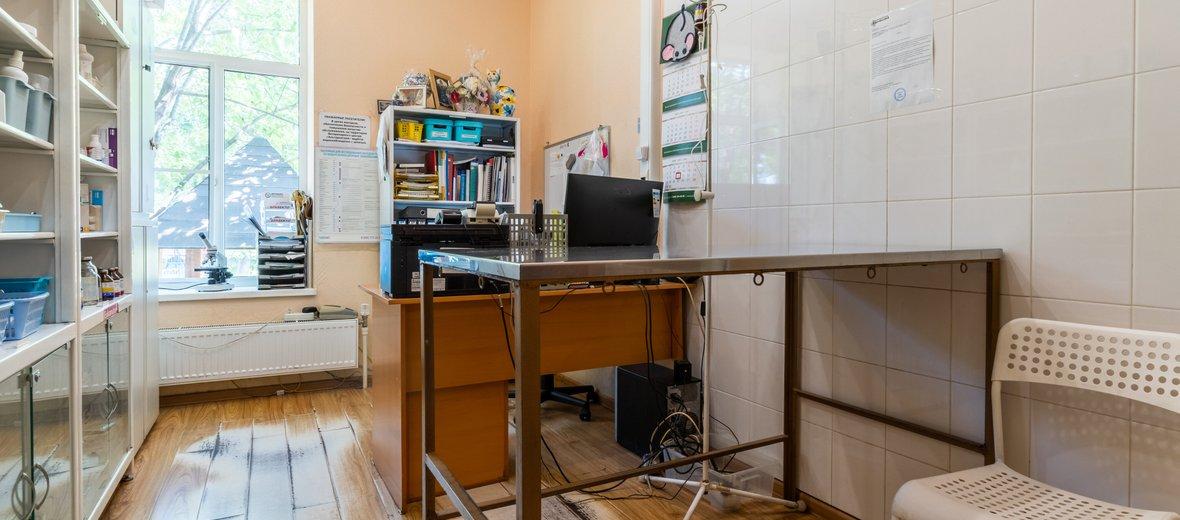 Фотогалерея - Ветеринарный центр АльтернативА на Керамической улице в Балашихе