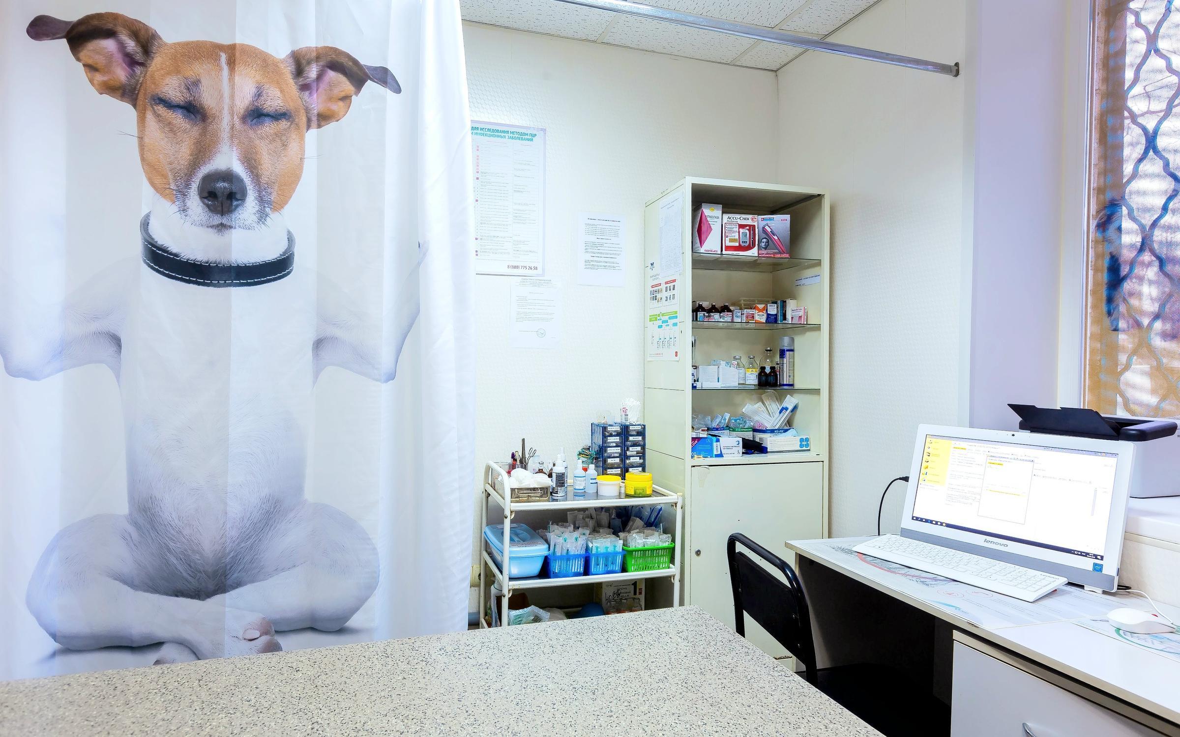 фотография Ветеринарной клиники Ваш Добрый Доктор в Погонном проезде, 1 к 9