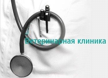 Оренбург ул рыбаковская больница кодирование от алкоголя