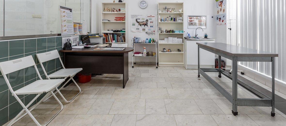 Фотогалерея - Ветеринарная клиника Нева-Вет в Пушкинском районе
