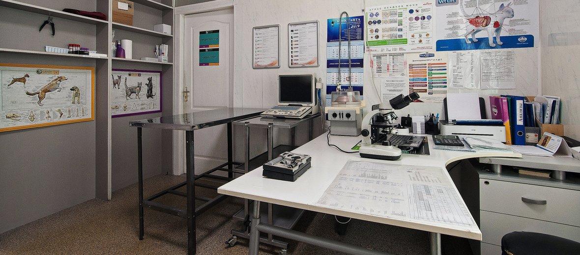 Фотогалерея - Ветеринарная клиника ТИМ на метро Речной вокзал