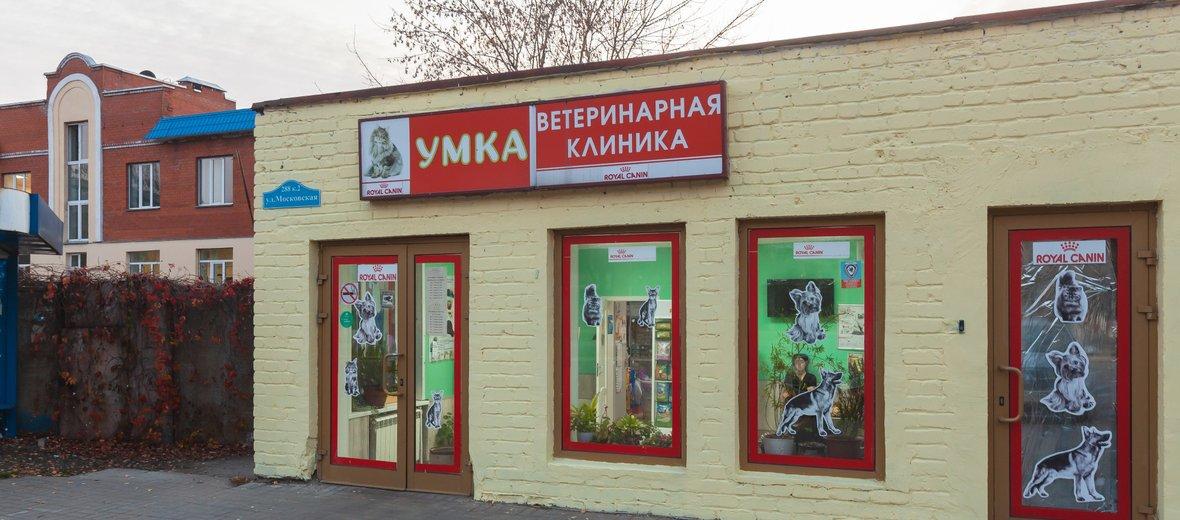 Фотогалерея - Ветеринарная клиника Умка на Московской улице, 288 к 2