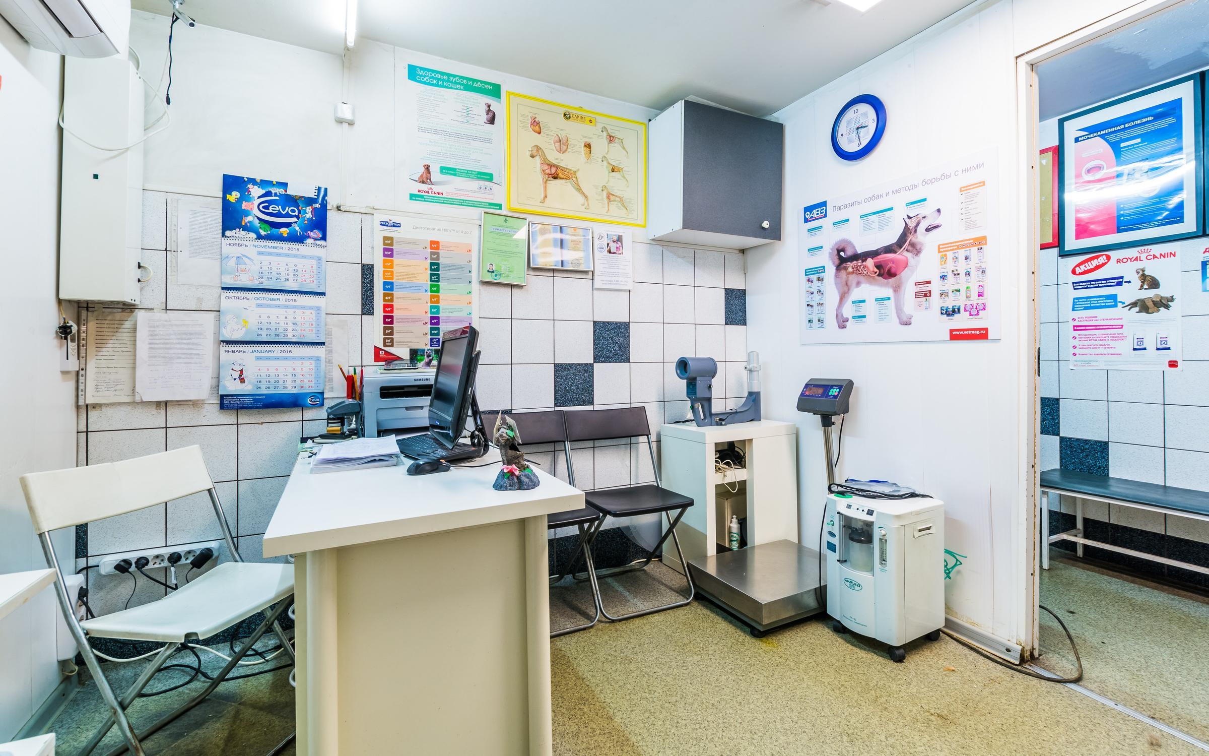Платные услуги в поликлиники озтп